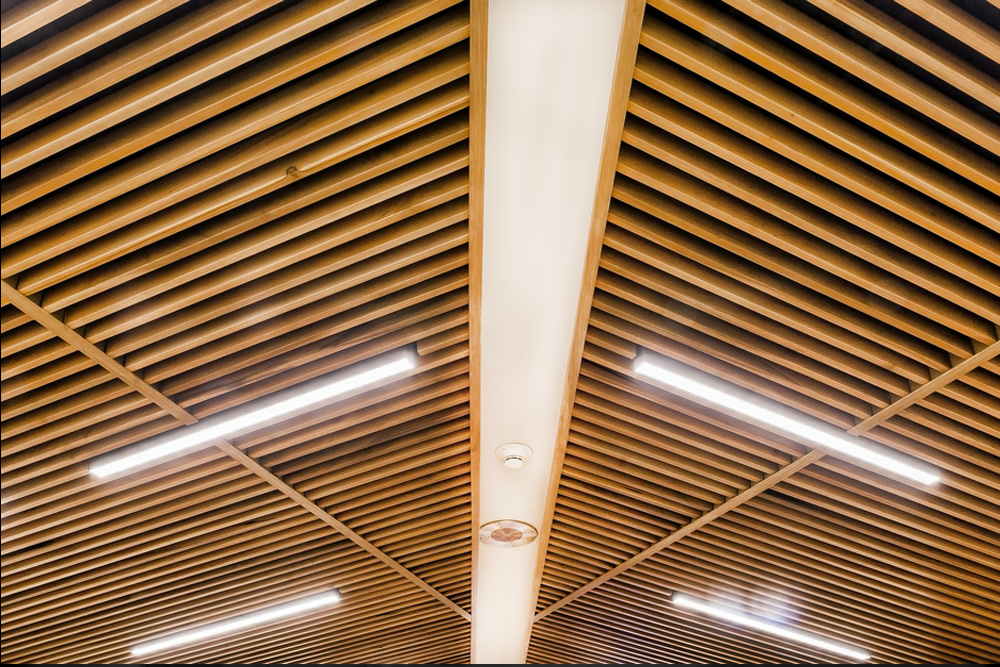 Disable Veterans Conference Ceiling