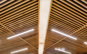 DAV Accessible Conference Room Ceiling