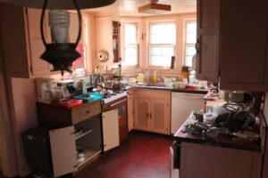 Encore-Sustainable-Architects-May-Residence-Kitchen-Renovation